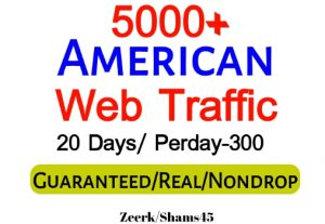 Get 5000+ American Organic Web Traffic For Your Website,(per day-300, 20 days) organic and real, active user, Real Visitors guaranteed