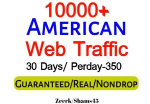 Get 10000+ American Organic Web Traffic For Your Website,(per day-350, 30 days) organic and real, active user, Real Visitors guaranteed