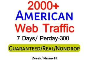 Get 2000+ American Organic Web Traffic For Your Website,(per day-350, 6 days) organic and real, active user, Real Visitors guaranteed