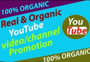 Get Super-Fast YouTube Video Promotion Via Social Media marketing for $10