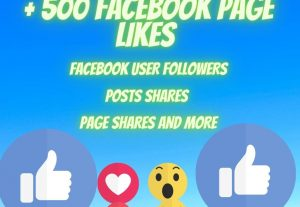 Fast Facebook PAGES/POSTS/PHOTOS  500 likes high-quality promotion Real organic Nondrop guaranteed for life
