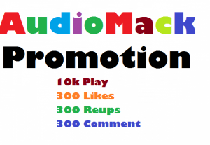 Add 300 Likes 300 Reups 300 Playlist 10k play to Your Audiomack Song or Track