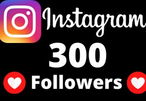 I will add 300 Instagram followers