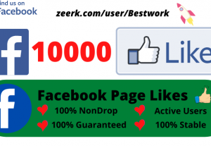Provide you 10000 Facebook Page Likes Lifetime Guaranteed Non-drop