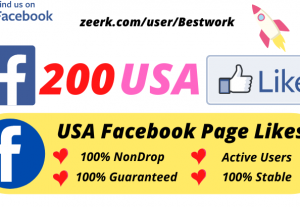 I will Add 200 USA Facebook Page Likes NonDrop Lifetime Guaranteed