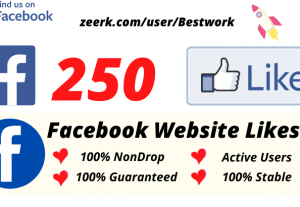 I will Add 250 Facebook Website Likes NonDrop Lifetime Guaranteed