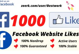 I will Add 1000 Facebook Website Likes NonDrop Lifetime Guaranteed