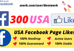 I will Provide 300 USA Facebook Page Likes NonDrop Lifetime Guaranteed