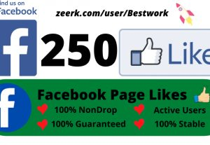 I will give you 250 Facebook Page Likes Non-drop Lifetime Guaranteed