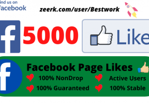 Add 5000 Facebook Page Likes Permanent Non-drop Lifetime Guaranteed