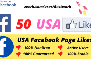 I will Add 50 USA Facebook Page Likes NonDrop Lifetime Guaranteed