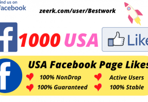 I will Add 1000 USA Facebook Page Likes NonDrop Lifetime Guaranteed
