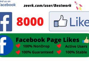 I will Provide 8000 Facebook Page Likes Non drop Lifetime Guaranteed