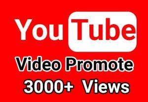 I will give 3000+ YouTube Video Views, Non Drop Guaranteed