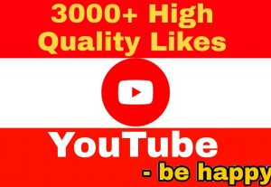 Add 3000+ High Quality,  100% Non Drop YouTube Likes Instantly