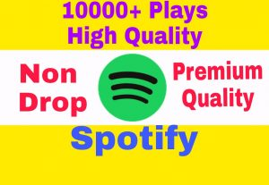 Add 10000+ Non Drop and High Quality Spotify Plays