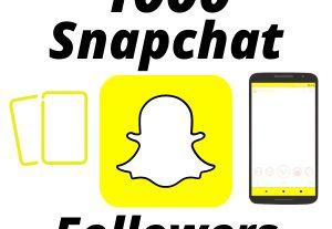 I will Provide 1000 Snapchat Followers High-Quality Lifetime Guarantee