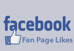 I will provide +300 Facebook Fan Page Likes