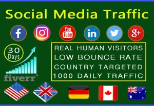 Visitors from the world really target organic web traffic from the USA