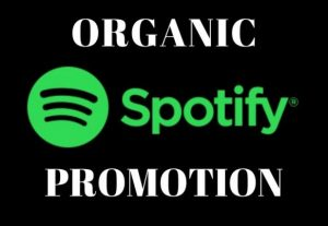 I Will Add 1200+ Spotify Streams Lifetime Non Drops