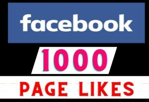 Get 1000+ Facebook page likes instant, Real user, Non-drop, Lifetime guaranteed