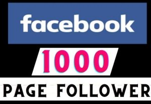 Get 1000+ Facebook Fan Page Followers instant, Real user, Non-drop, Lifetime guaranteed