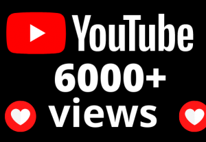 I will add 6000+ views and 55 hours watch time