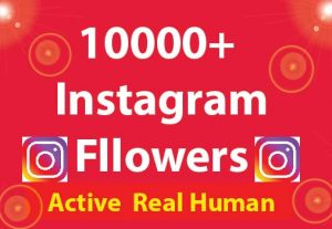 10000+ Instagram Followers with 100% Non Drop guaranteed & Real High Quality