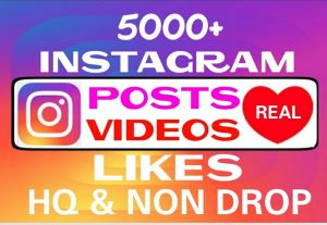 Add 5000+ non drop Instagram Likes instantly