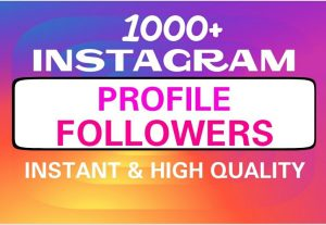 Add 1000+ Guaranteed followers professionally