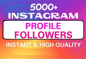 Add 5000+ Instagram followers permanently