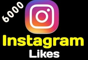 I will give you 6000+ Instagram Likes Instant, active user, Non-drop, and lifetime guaranteed
