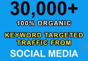 30,000+ keyword targeted traffic from google for $3