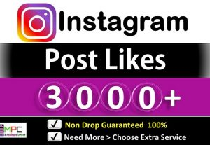 Get Instant 3000+ Instagram Likes in Picture and Video, Non Drop Guarantee.