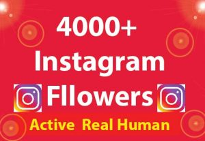 4000+ Instagram Followers with 100% Non Drop guaranteed & Real High Quality