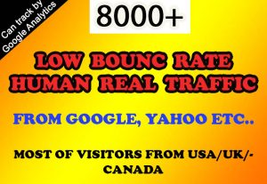 8000+ low bounce rate real human traffic from google, yahoo etc