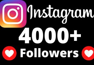 I will add 4000+ REAL AND non drop Instagram followers.