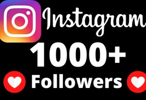 I will add 1000+ non drop Instagram followers.