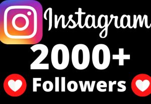 I will add 2000+ real and non drop Instagram followers.