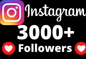 I will add 3000+ Active and non drop Instagram followers.