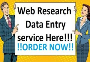 I will do web research and data entry