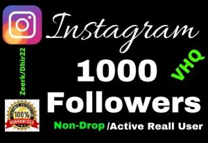 Get 1000+ VHQ 100% Real Instagram Followers 15 Days Refill, Lifetime guaranteed, Zero drop out