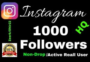 Get 1000+ HQ 100% Real Instagram Followers 15 Days Refill, Lifetime guaranteed, Zero drop out