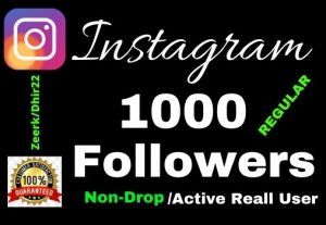 Get 1000+ REGULAR Package Instagram Followers Only 4$, Real Active User and Organic, 7 Days guaranteed