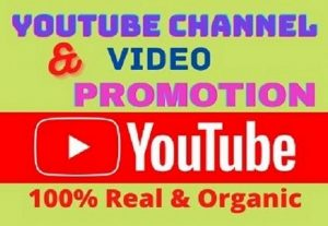 I will do youtube channel promotion for organic growth