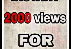 Get  non dropped lifetime guaranteed 2000 views for your youtube channel .. watchtime hours and subscribers on order additional