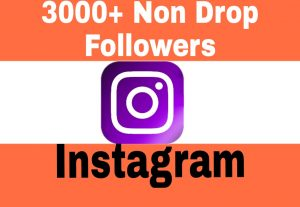 Add 3000+ Organic and Non Drop Followers to Your Instagram Post