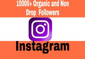 Add 10000+ Non Drop and Exclusive Quality Followers to Your Instagram Post