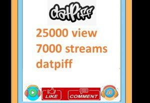 25000 view 7000 streams datpiff