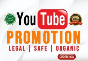 I will do YouTube channel promotion or video promotion with Organic & Real Audience